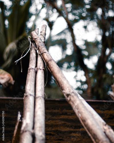 Estructura de palos de bambu