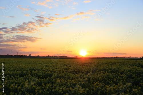 Fototapeta  Kolorowy zachód słońca nad obszarem wiejskim, kolorowe chmury.  obraz