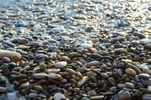 Pebble Stones On The Sea Beach...