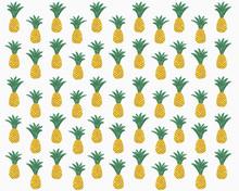 Illustration Of Pineapples On White Background