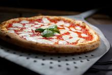 Pizza  Margherita Isolata Sopra Pala In Metallo Da Pizza