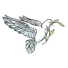 White Dove With An Olive Branc...
