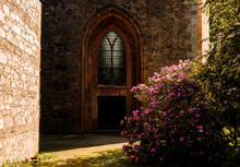 Church Door With A Rhododendro...