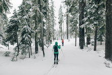 Two Cross Country Skiers On A Trail Near Mt. Hood In Oregon.