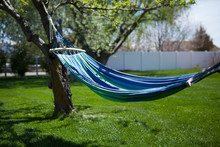 Blue And Green Striped Hammock Hanging In A Grassy Backyard