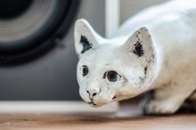Closeup Shot Of A Clay Statue Of A White Cat On A Wooden Table
