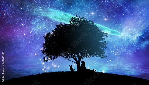 Fototapeta Girl watching the stars in night sky fantasy landscape illustration obraz