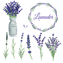 Watercolor Set Lavender On Iso...