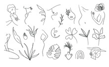 Woman Line Art Clipart.  Female Line Drawing Illustrations. Nude And Botanical Line Artwork.