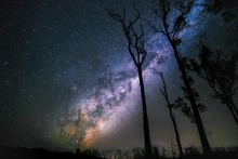 Stars In The Milky Way Galaxy ...