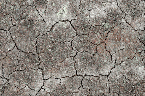 Canvas-taulu The surface is gray or arid land, the soil surface is cracked from arid agriculture on global warming