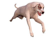3D Rendering Crossbreed Dog On...