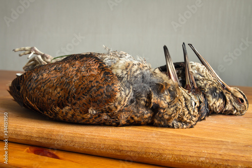 woodcocks and snipe are on the kitchen table Canvas Print