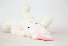White Fluffy Bunny Lying On Back On Blanket. Closeup.