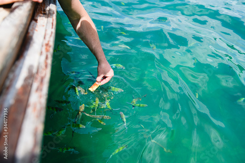 Male hands with fish bait at water Canvas Print