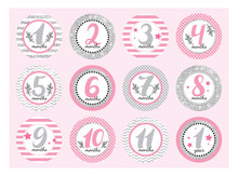 Monthly Baby Stickers For Newb...