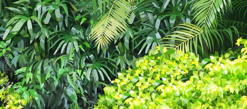 Green background of dense lush vegetation in the jungle - fototapety na wymiar