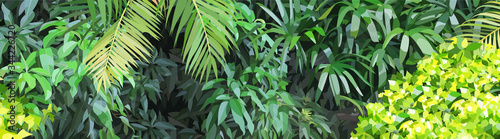 Fotografie, Tablou Panoramic background of dense green vegetation in the jungle