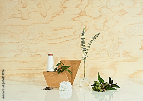 Still life with plants in front of wood pattern - 344258114