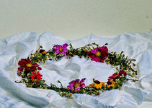 Colorful Floral Garland On Whi...