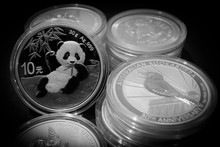 Silver Investment Coins Bank