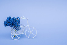 A Small Bicycle With A Bouquet...