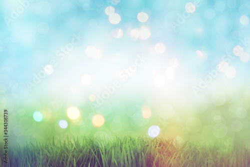 Beautiful texture background with green grass and bokeh for greeting card Canvas Print