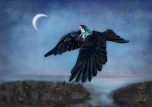 Girl Flying On The Starry Crow
