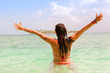 Rear View Of Mid Adult Woman With Arms Raised Standing In Sea Against Sky