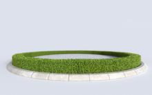 Circle Green Grass Botany Isla...
