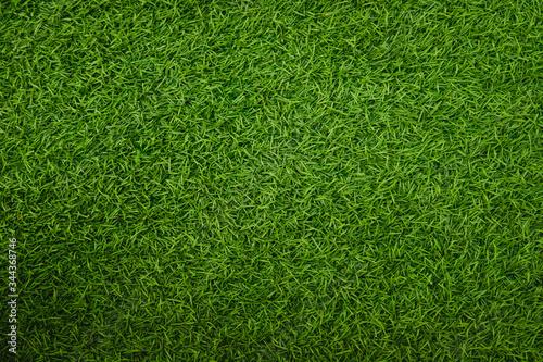 Fototapeta Green artificial grass natural obraz na płótnie