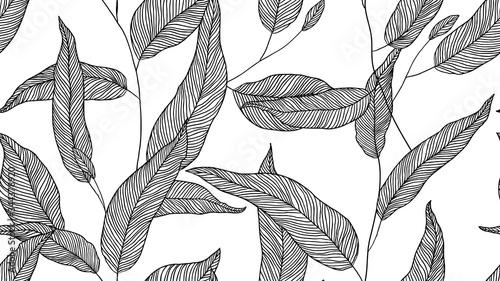 Fotografija Foliage seamless pattern, eucalyptus leaves line art ink drawing in black on whi