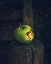 Close-up Of Rotten Apple On Tree Stump