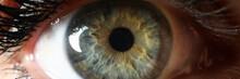 Beaty Woman Clor Eye Closeup S...