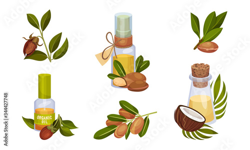 Fotografie, Obraz Coconut and Jojoba Organic Compositions with Tropical Leaves and Oil Bottles Vec