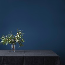 Leaves In Vase On Table Against Blue Wall