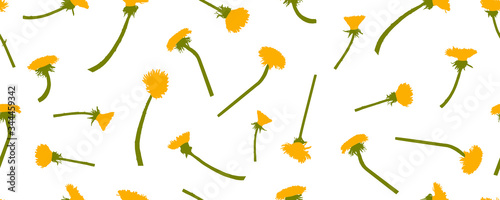 Stampa su Tela Yellow dandelions flowers, seamless pattern. Vector illustration.