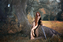 Art Photo Of A Red-haired Warrior With A Sword Sitting On The Trunk Of An Old Willow