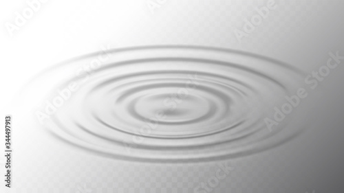 Fotografie, Obraz Ripple Water Surface From Drop Side View Vector