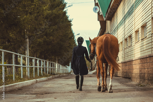 Fotomural Rider woman with the horse are walking in a stable outdoors for dressage trainin