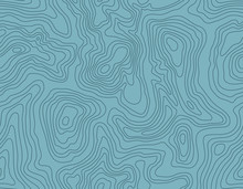 Seamless Topographic Map Patterns