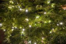 Small Christmas Lights On A Re...
