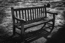 The Old Bench In The Park, Black And White