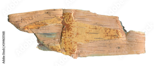 Canvastavla Natural wood texture background with raw birch textures for forestry and wooden wallpaper