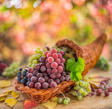 Autumn Still Life With Ripe Di...