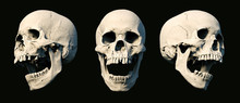 Sets Human Skull Turned From Different Sides On Rich Colors. White Isolated. The Concept Of Death, Horror. Symbol Of Creepy Halloween. 3d Rendering Illustration.