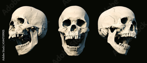 Sets Human Skull turned from different sides on rich colors Tablou Canvas