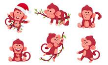 Funny Cartoon Monkey Swinging ...
