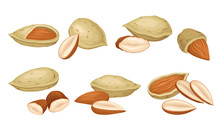 Almond Nut With Whole And Crac...