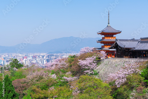 Photo 京都 清水寺の三重塔と桜